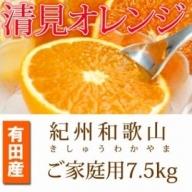 G6037_【ご家庭用訳アリ】紀州有田産清見オレンジ 7.5kg