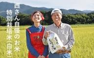 【令和2年度産】西さんちの特別栽培米(白米)森のくまさん 5kg