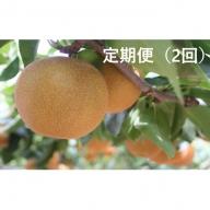 清流錦梨(定期便2回)【9月2.5kg・10月3kg】