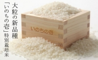 飛騨産特別栽培米 『いのちの壱』5kg×2 合計10kg 令和2年産 玄米対応可能[D0023]