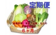 【6ヶ月定期便】能代の恵み「地場野菜・果物・山菜」などの季節の詰合せ