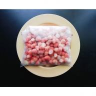 CY47◇淡路島白イチゴ「アイランドベリー」 冷凍淡雪 フローズンストロベリー