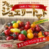 【お試し】まるでトマトの宝石箱!フルーツジュエリートマト 800g  H004-027
