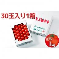 完熟中玉トマト『レッドオーレ』1箱【2020年10月以降お届け】