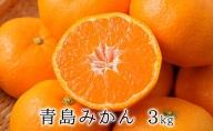 【2022年1月上旬より順次発送】甘さと酸味がマッチ 青島みかん3kg
