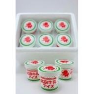 武田牛乳アイス<ギフト>(12個入り)