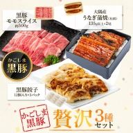 鹿児島県大隅産うなぎ2尾・黒豚モモスライス・黒豚餃子セット