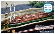 19-006C.【新型コロナ被害支援品】四万十川優化イオンうなぎ蒲焼2尾(ボイル肝、たれ付き)