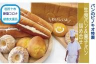 19-676C.【新型コロナ被害支援品】パンのピノキオ特製 生食パン&菓子パン詰め合せ
