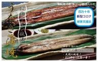 19-301C.【新型コロナ被害支援品】 四万十川優化イオンうなぎ 蒲焼1尾・白焼1尾(ボイル肝、たれ付き)