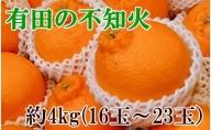 ZD6118_【濃厚】有田の不知火 約4kg(16玉~23玉おまかせ)