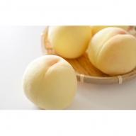 【早期受付品】JA岡山東糖度センサー選果 赤磐の白桃 約1.5kg