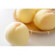 【早期受付品】JA岡山東糖度センサー選果 赤磐の白桃 約2.0kg