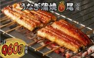 【C-080】魚市場厳選 国産うなぎの蒲焼き(6尾)
