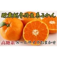 ZD6218_【高糖系】貯蔵越冬丹生系みかん 約5kg(S~Lサイズおまかせ)