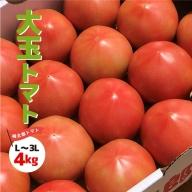 大玉トマト 4kg 7月よりお届け