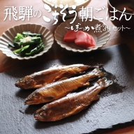 川魚甘露煮 3種 食べ比べセット ご飯のお供 おつまみ ぼっか煮 さわ 飛騨のごちそう[Q096]