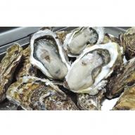 サロマ湖産 殻付き牡蠣貝(2年物)3kg