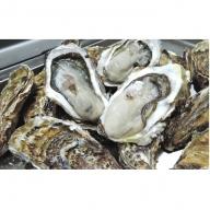 サロマ湖産 殻付き牡蠣貝(2年物)5kg