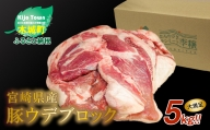 K16_0014 <宮崎県産豚ウデブロック5kg超!>