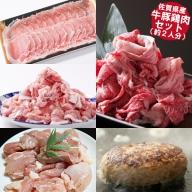 D−123.佐賀県産牛豚鶏肉ステイホームセット(約2人分)