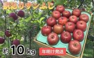 【訳あり】 りんご 約10kg サンふじ 青森産【2021年1月から順次発送】
