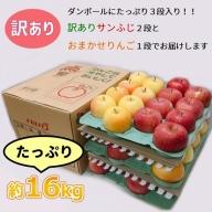 【年明け】サンふじの理由あり林檎&おまかせ1品種約16kg(計2品種)