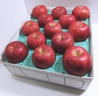 りんご 青森産 約5kg ジョナゴールド 【2021年1月から順次発送】五所川原金山地区太田農園