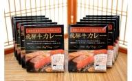 飛騨牛最高ランク5等級使用 飛騨牛カレー10食セット[D0036]