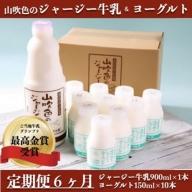 【最高金賞】黒川温泉発 山吹色のジャージー牛乳&ヨーグルトセット 6ヶ月定期便