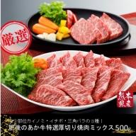 【熊本県産】肥後のあか牛 特選厚切り焼肉ミックス3種(500g)