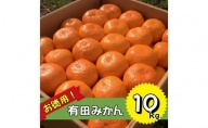 BD6012_お徳用!有田みかん たっぷり10kg!