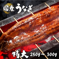 BYA4◇国産 特大 うなぎ蒲焼 1尾(真空瞬間冷凍)
