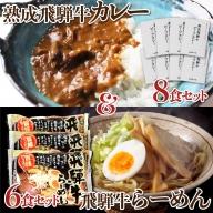 熟成ビーフカレー8食&飛騨牛ラーメン6食セット[D0039]