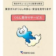 東京ガスのくらし見守りサービスご家族見守り(1年間)神奈川県 海老名市 エリア