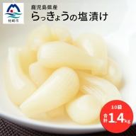 AA-321 鹿児島県産 塩らっきょう1.4kg 【140g×10パック】【数量限定】(先行予約受付中‼) らっきょう ラッキョウ 塩漬け おつまみ お茶請け
