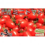 超完熟ミニトマト【アイコ】大満足のたっぷり3kg