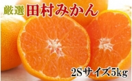ZD6226_【ブランドみかん】田村みかん 約5kg(2Sサイズ・秀品)