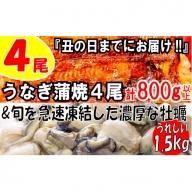 B155.うなぎの蒲焼4尾&旬を急速凍結した濃厚な牡蠣(1.5kg)【海鮮おススメセット】