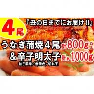 B153.うなぎの蒲焼4尾&無着色辛子明太子1キロ【ご飯のお供!最強セット】