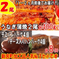 A601.うなぎの蒲焼2尾+大人気のデミ&チーズハンバーグ8個(2種×4個)【新宮町ダイヤモンドセット】
