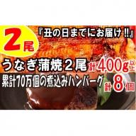 A599.うなぎの蒲焼2尾&大人気の煮込みハンバーグ8個【新宮町ゴールデンセット】