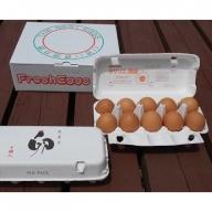 AG11_江原ファーム 体に優しい地養卵(計20個)