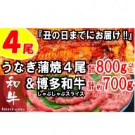 B150.うなぎの蒲焼4尾&博多和牛700g【スタミナ満点!元気セット】