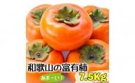 BD6024_10月発送分 和歌山 富有柿  7.5kg ギフト 秋の味覚 甘柿