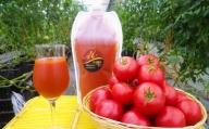 """K03_0016<宮崎県木城町産の高糖度トマト""""Mの雫""""を100%使ったトマトジュース 1kg×3本>"""