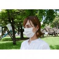 AA-8503_夏用涼感!繊維のプロが作ったひんやりマスク(10枚)