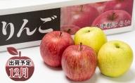 年内 サンふじ×王林 約5kg 【JA津軽みらい・平川市産・青森りんご・12月】