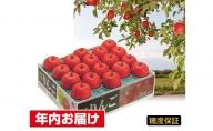 年内 糖度保証サンふじ 約5kg 【JA津軽みらい・平川市産・青森りんご・12月】