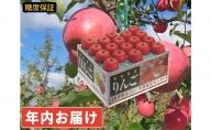 年内 糖度保証サンふじ 約10kg 【JA津軽みらい・平川市産・青森りんご・12月】